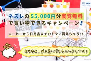 ネスレのキャンペーンなら55,000円分の買い物が実質無料!